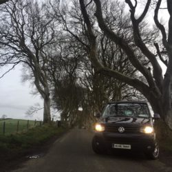 Big Blue at the Dark Hedges, Northern Ireland