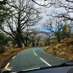Road Trip Adventure Ireland