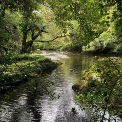 Scenic Landscapes Ireland Touring by Campervan